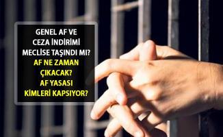 2019 Genel Af ve Ceza İndirimi Yasası Ne Zaman Çıkacak? Genel Af Son Durum Nedir? Af Çıkacak mı?