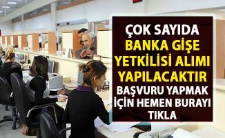 Banka personeli alımı yapılacaktır! Banka personel alımı iş ilanları!..