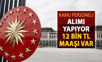 Cumhurbaşkanlığı Kamu Personeli Alımı Yapıyor ! 12 Bin 744 TL Maaş Verilecek