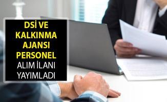 DSİ ve Kalkınma Ajansı Personel Alım İlanı Yayımladı! İŞKUR Kamu Personeli Alımı 2019