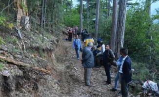 Karabük Yenice Ormanlarında Feci Olay! İşçilerin Üzerine Ağaç Devrildi! Ölü ve Yaralı Var