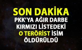 Kırmızı liste ile aranan PKK'nın elebaşlarından Mehmet Soysüren etkisiz hale getirildi