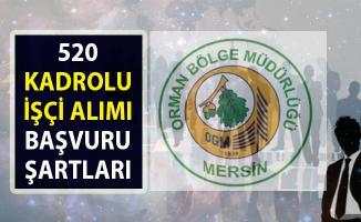 Orman Genel Müdürlüğü (OGM) 520 kadrolu kamu işçi alımı başvuru şartları!