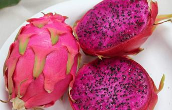 Ejder meyvesi nedir? Efuli ne demek? Efulinin faydaları nelerdir?