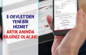 Plakalara yazılan trafik cezaları! Plakaya yazılan ceza bilgileri, e-devlet üzerinden anında öğrenilebilecek