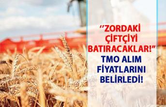 Toprak Mahsulleri Ofisi'nin (TMO) 2019 buğday ve arpa alım fiyatı!