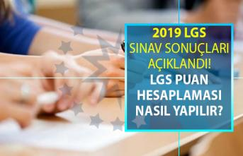 2019 Liselere Geçiş Sınavı (LGS) sonuçları açıklandı!
