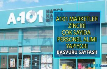 İŞKUR, A101 Marketlerinde çalıştırılmak üzere en az ilköğretim mezunu personel alımı yapıyor!