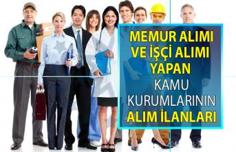 Memur alımı yapan kamu kurumlarının 2019 Haziran ayı güncel ilanları! Sözleşmeli Kamu personeli alımı iş başvurusu ilanları!