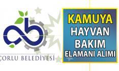 Çorlu Belediyesi Kültür ve sosyal işler müdürlüğü hayvan bakım elemanı alımı başvuru ilanı