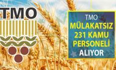 TMO Mülakatsız 231 Kamu Personeli Alımı Yapıyor