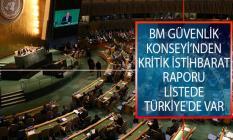 Birleşmiş Milletler (BM) Güvenlik Konseyi'nden Kritik İstihbarat Raporu! Listede Türkiye'de Var!