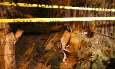 İzmir'de son dakika ölümlü trafik kazası! 1 Ölü 7 yaralı
