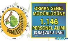 OGM KPSS 60 puan ile Orman Personeli alımı