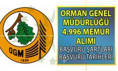 Orman Genel Müdürlüğü (OGM) memur alımı başvuruları ne zaman başlıyor? Personel alımı başvuru şartları nelerdir?