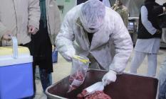 Türkiye genelindeki birçok işletmede ürün bazlı gıda denetimi yapılacak!
