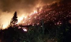 Karadeniz yanıyor: 58 bölgede yangın alarmı!