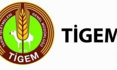 Tarım İşletmeleri Genel Müdürlüğü (TİGEM) KPSS şartıyla memur alımı yapacak!