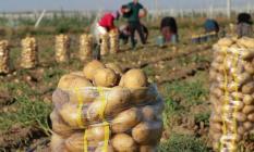 Bakanlıktan patates ve soğan kararı!