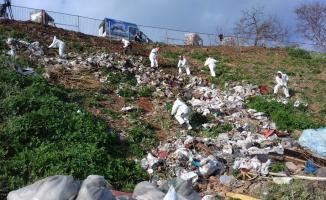Büyükada'da 25 ton atık çöp toplandı!
