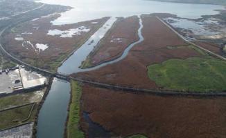 Kanal İstanbulla büyük darbe! 458 hektarlık ormanlık alanın yok olacak!