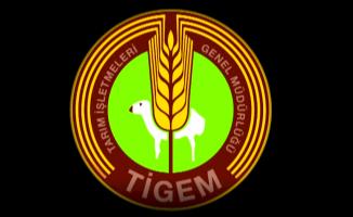Tarım İşletmeleri Genel Müdürlüğü (TİGEM) memur alımı başvuruları 31 Ocak'ta sona eriyor!