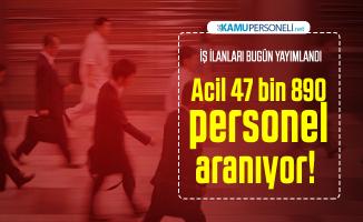İŞKUR 17 şubat iş ilanlarını açıkladı: Kamu ve özel kurumlar tarafından Acil 47 bin 890 personel aranıyor! Memur alımı, bekçi alımı...