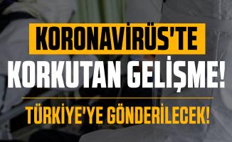 Son dakika Koronavirüste korkutan gelişme: Türkiye'ye gönderilecek!