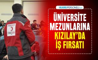 Türk Kızılayı'ndan üniversite mezunlarına iş fırsatı! KPSS'siz personel alınacak