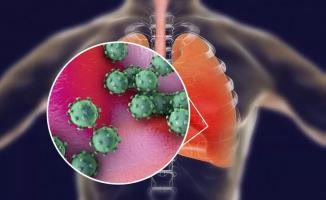 20 Mart itibarı ile Corona virüsten ölenlerin güncel sayısı: Türkiye, İtalya, İspanya, iran, Çin, ABD...