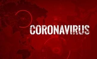 Corona virüsü nedeniyle ABD ve İngiltere'de 24 saatte hayatını kaybedenlerin sayısı korkuttu!