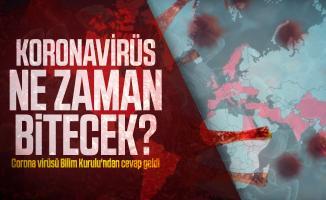 Koronavirüs Ne Zaman Bitecek? Corona virüsü Bilim Kurulu'ndan cevap geldi
