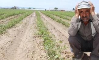 Özcan Aygun: Daha 2020 yılı tarımsal üretim destek genelgesi yok!