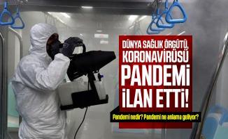 Son dakika Dünya Sağlık Örgütü, koronavirüsü pandemi ilan etti! Pandemi nedir? Pandemi ne anlama geliyor?
