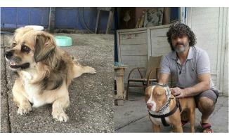 Adana'da dehşet olay! Havlayan köpekleri ve sahibini bıçakladılar