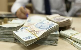 Bakan Pakdemirli'den müjde: 53 milyon liralık destek ödemeleri bugün saat 18.00'de başlıyor!