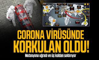 Corona virüsünde korkulan oldu! Mutasyona uğradı ve üç koldan saldırıyor