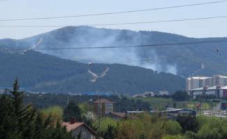 İstanbul'da ormanlık alan yandı!  Ekiplerin çalışmaları sürüyor
