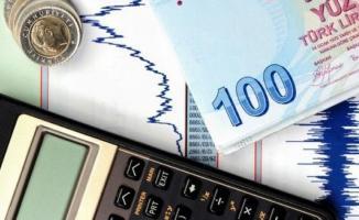 Türkiye Varlık Fonu'nun raporunda bir yıllık faiz giderinin 2,5 milyar TL'ye ulaştığı bilgisi verildi!