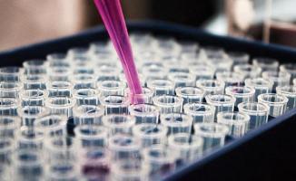 Corona virüsüne karşı yüzde yüz etkili bir antikor üretildi!