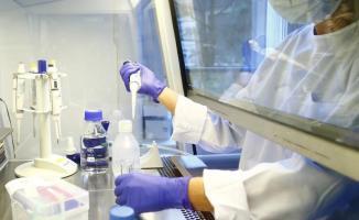 DSÖ'den flaş açıklama: Bu virüse karşı aşı geliştirmek çok zor!