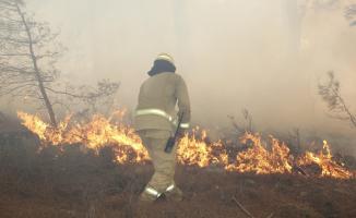 Önce Kütahya, şimdi de Muğla'da korkutan orman yangını! Rüzgâr sebebiyle hızla yayılmaya devam ediyor! Kontrol altına alınamadı!