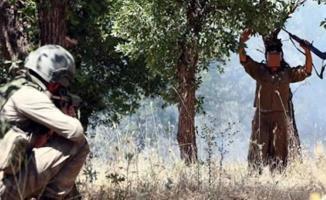 PKK çözülmeye devam ediyor! Mardin'de teröristler güvenlik güçlerine sığındı