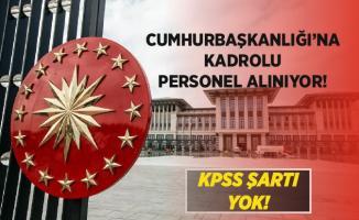 Cumhurbaşkanlığı'na kadrolu KPSS şartsız personel alımı yapılıyor! Başvurular 22 - 26 Haziran arasında!
