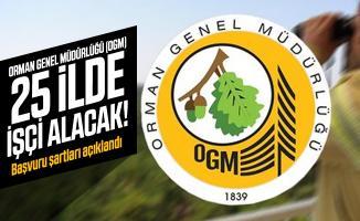 Orman Genel Müdürlüğü (OGM) 25 ilde işçi alınacak! Başvuru şartları açıklandı