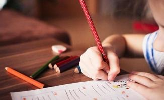Telafi eğitimleri 31 Ağustos'ta başlıyor!