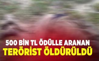 500 bin TL ödülle aranan terörist öldürüldü