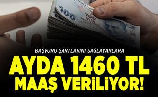 Başvuru şartlarını sağlayanlara ayda 1460 TL maaş veriliyor!