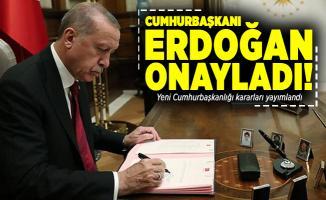 Cumhurbaşkanı Erdoğan onayladı! Yeni Cumhurbaşkanlığı kararları Resmi Gazete'de yayımlandı