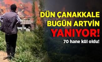 Dün Çanakkale bugün Artvin cayır cayır yanıyor! 70 hane kül oldu!